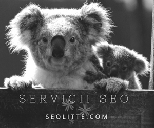 seo in romania
