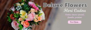 Florarie Online în Craiova