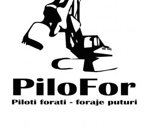 piloti forati preturi